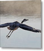 Majesty In Motion Metal Print