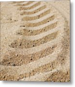 Making Tracks Metal Print