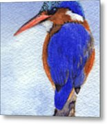 Malachite Kingfisher Metal Print