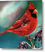 Male Cardinal And Snowy Cherries Metal Print