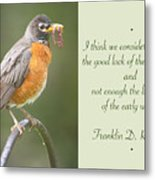 Male Robin With Worms In Bill Animal Behavior Metal Print
