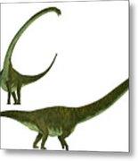 Mamenchisaurus Hochuanensis Metal Print