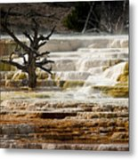 Mammoth Hot Springs Beauty Metal Print