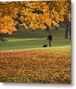 Man In The Park Metal Print