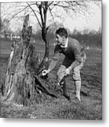 Man Retrieving Golf Ball From Tree Metal Print