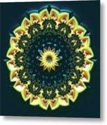 Mandala 467567 Metal Print