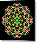 Mandala Image #14 Created On 2.26.2018 Metal Print