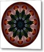 Mandala - Talisman 1440 Metal Print