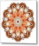 Mandala - Talisman 1620 Metal Print