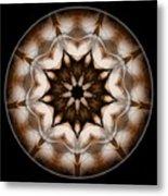 Mandala - Talisman 3702 Metal Print
