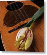 Mandolin And Tulip Metal Print