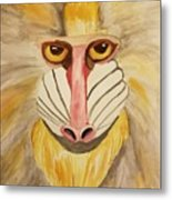 Mandrill Monkey Metal Print