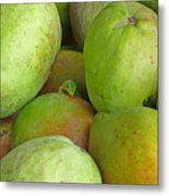 Mangoes Etc. Metal Print
