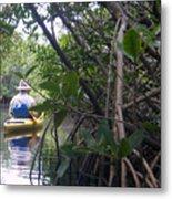 Mangrove Kayaker Metal Print by Steven Scott