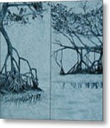 Mangroves Metal Print