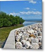 Mangroves Rocks And Ocean Metal Print