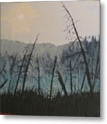Manitoulin Beaver Meadow Metal Print