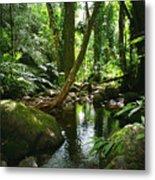 Manoa Valley Stream Metal Print