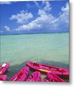 Many Pink Kayaks Metal Print