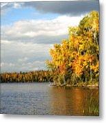 Maple Lake Metal Print