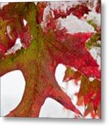 Maple Leaf And Snow 7467 Metal Print