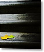 Maple Leaf On Step Metal Print