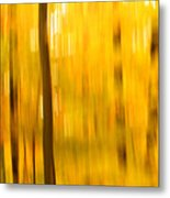 Maple Magic Metal Print
