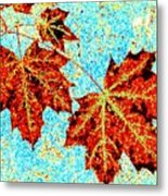 Maple Mania 13 Metal Print