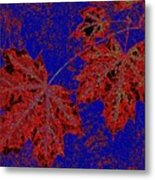 Maple Mania 15 Metal Print