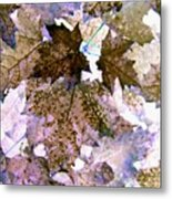 Maple Mania 25 Metal Print