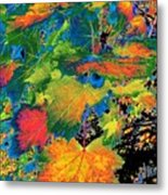 Maple Mania 3 Metal Print