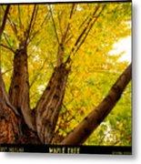 Maple Tree Poster Metal Print