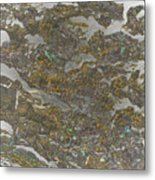 Marble Bark Colored Abstract Metal Print