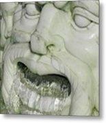 Marble Head Metal Print