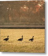 March Of The Geese Metal Print