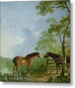 Mare And Stallion In A Landscape Metal Print