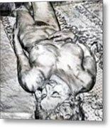 Nude Maria On Animal Sheets Metal Print