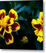 Marigold In Living Color Metal Print