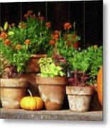Marigolds And Pumpkins Metal Print