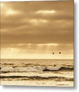 Marine Dream Metal Print