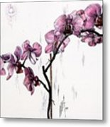Marning Orchids Metal Print