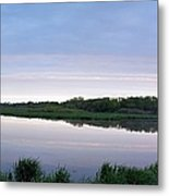 Marsh Calm Metal Print