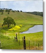 Marsh Creek Road Metal Print