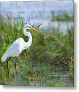 Marsh Egret Metal Print