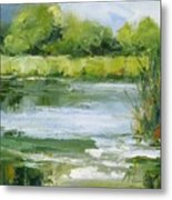 Marsh Inlet Metal Print