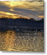 Marsh Ripple Pond Metal Print