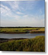 Marsh Scene Charleston Sc Metal Print