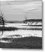 Marsh Skeletons Metal Print