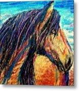 Marsh Tacky Wild Horse Metal Print