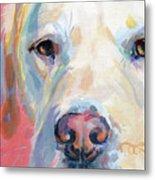 Martha's Pink Nose Metal Print